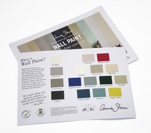 Wall Paint Colour Card reverse over front